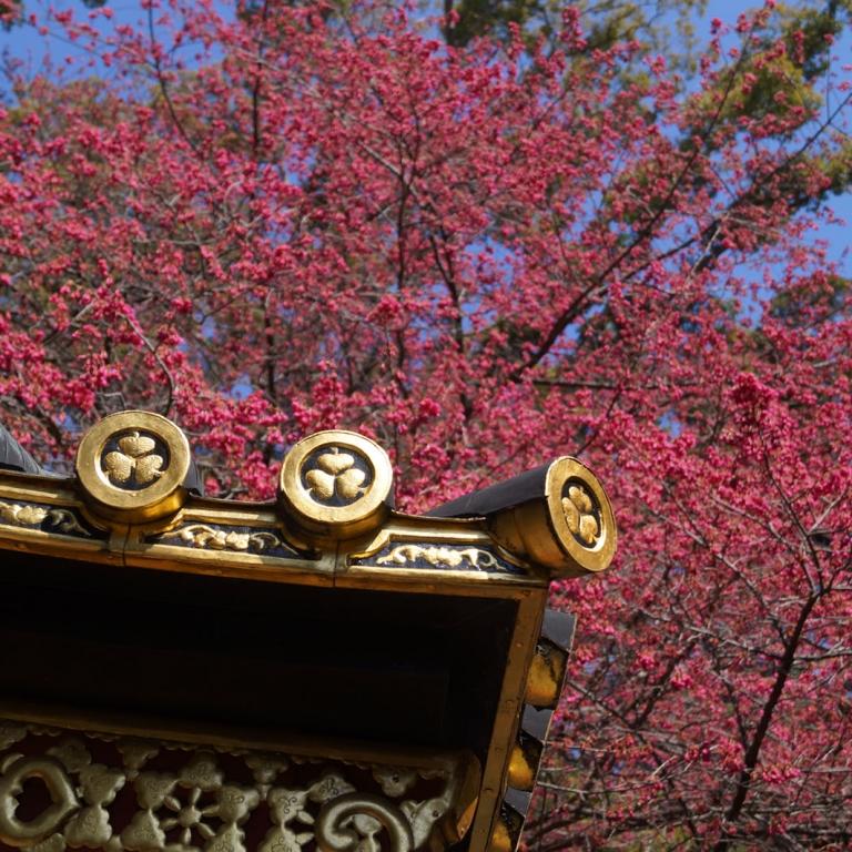 КуноДзан Тосёгу на фоне февральского неба; Сидзуока