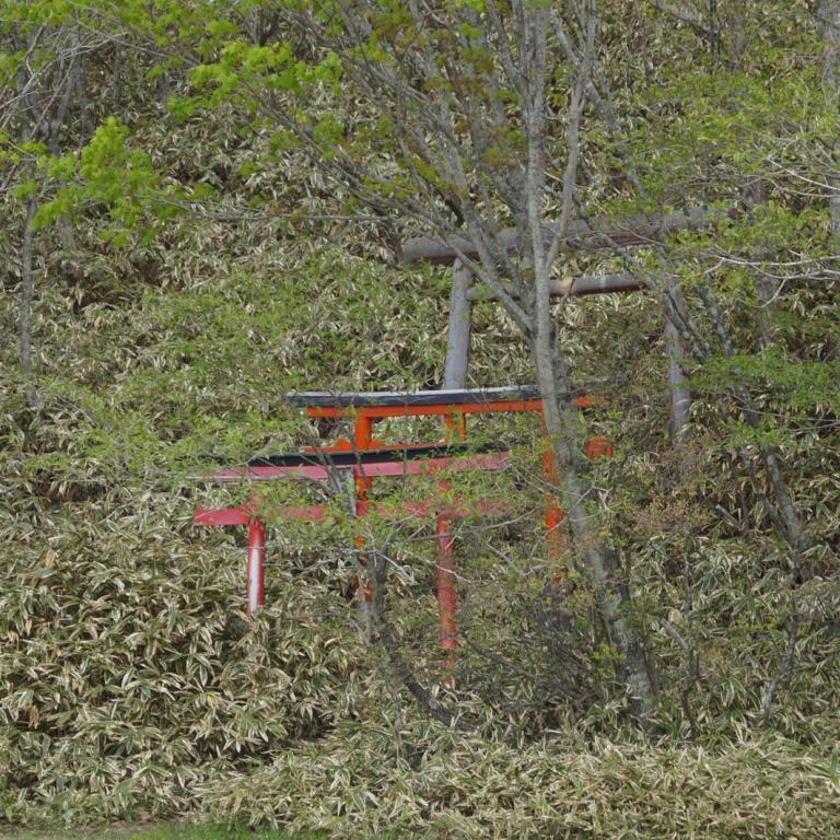 Гора Акаги и тории храма Акаги Дзиндзя на крутом склоне горы; Гумма