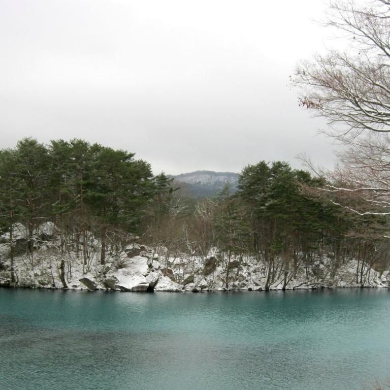 Озера и пруды